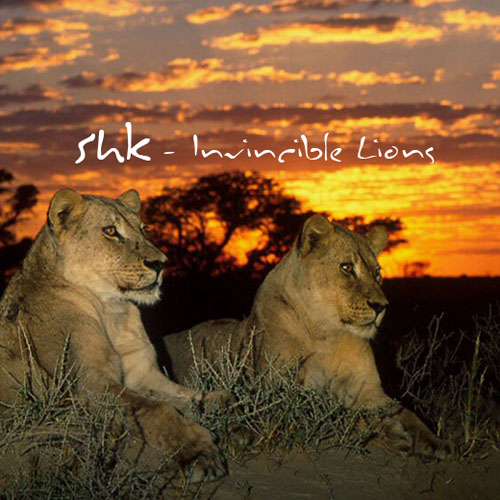 Shk - Invincible Lions